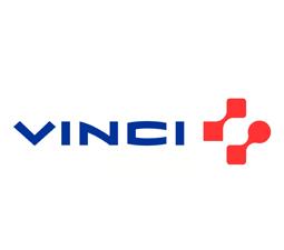 vinci1